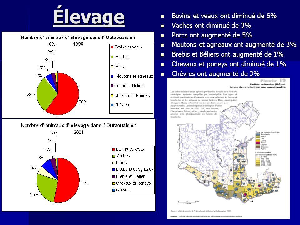 Élevage Bovins et veaux ont diminué de 6% Bovins et veaux ont diminué de 6% Vaches ont diminué de 3% Vaches ont diminué de 3% Porcs ont augmenté de 5%