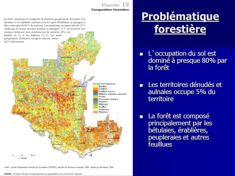 Problématique forestière L`occupation du sol est dominé à presque 80% par la forêt L`occupation du sol est dominé à presque 80% par la forêt Les terri