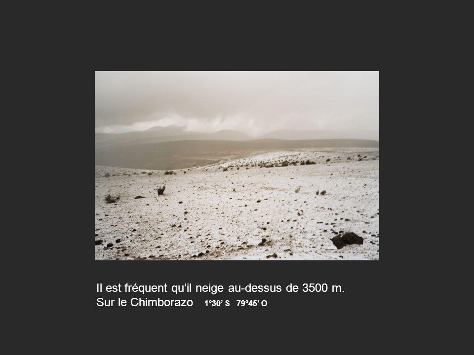 Il est fréquent quil neige au-dessus de 3500 m. Sur le Chimborazo 1°30 S 79°45 O