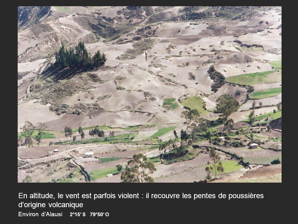 En altitude, le vent est parfois violent : il recouvre les pentes de poussières dorigine volcanique Environ dAlausi 2°15 S 79°50 O