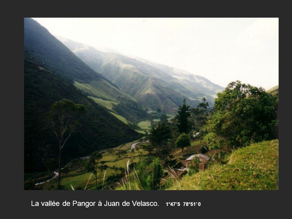 La vallée de Pangor à Juan de Velasco. 1°47S 78°51 0