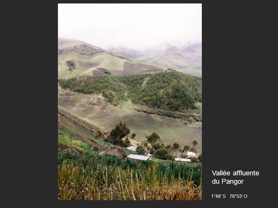 Vallée affluente du Pangor 1°48 S 78°53 O