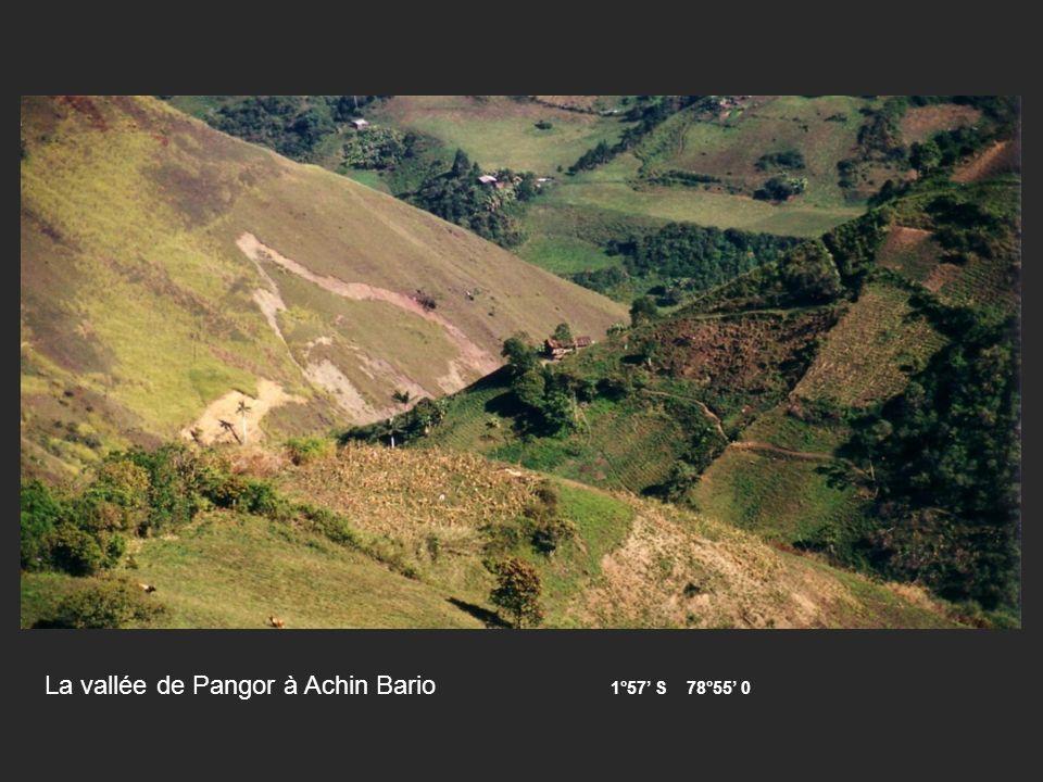 La vallée de Pangor à Achin Bario 1°57 S 78°55 0