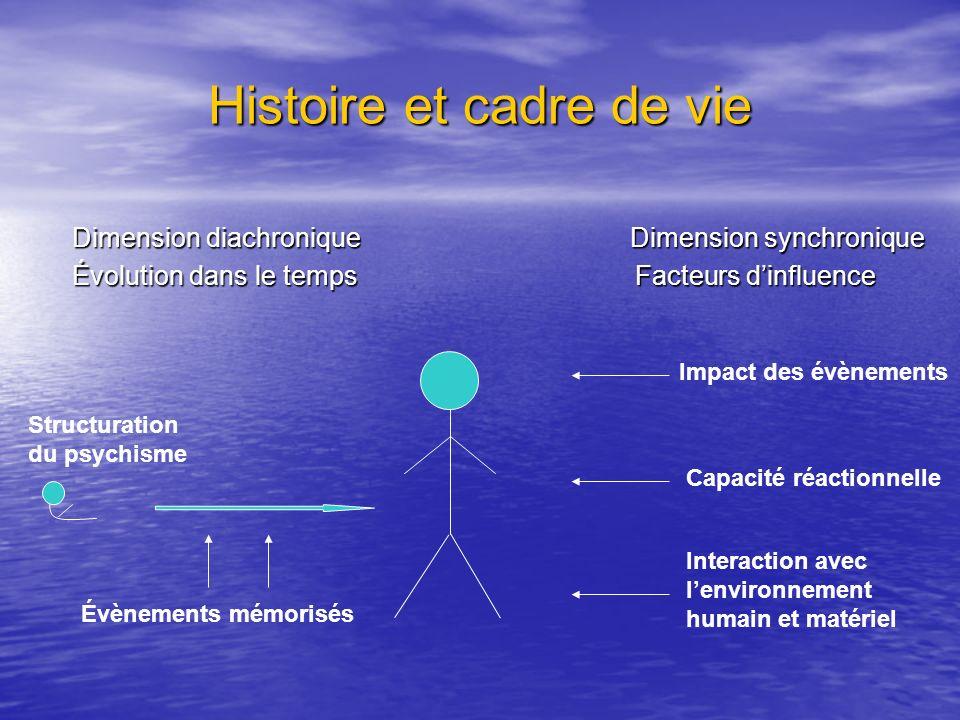 Histoire et cadre de vie Dimension diachronique Dimension synchronique Dimension diachronique Dimension synchronique Évolution dans le temps Facteurs
