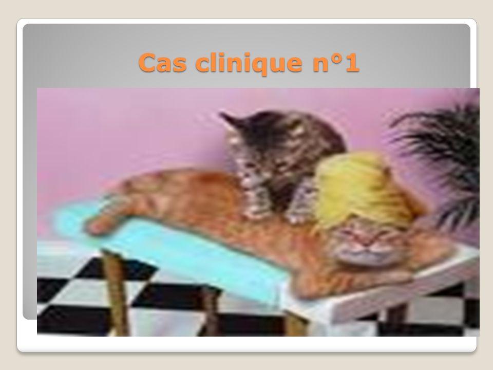 Cas clinique n°1 En conclusion 1: Désir sexuel refoulé, DE et EP. Il y a un cercle vicieux : DSH (désir sexuel hypo-actif)/EP (éjaculation précoce)/DE