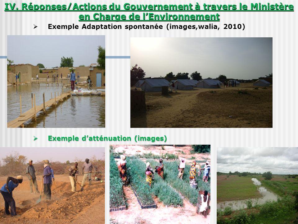 IV. Réponses/Actions du Gouvernement à travers le Ministère en Charge de lEnvironnement Exemple Adaptation spontanée (images,walia, 2010) Exemple datt
