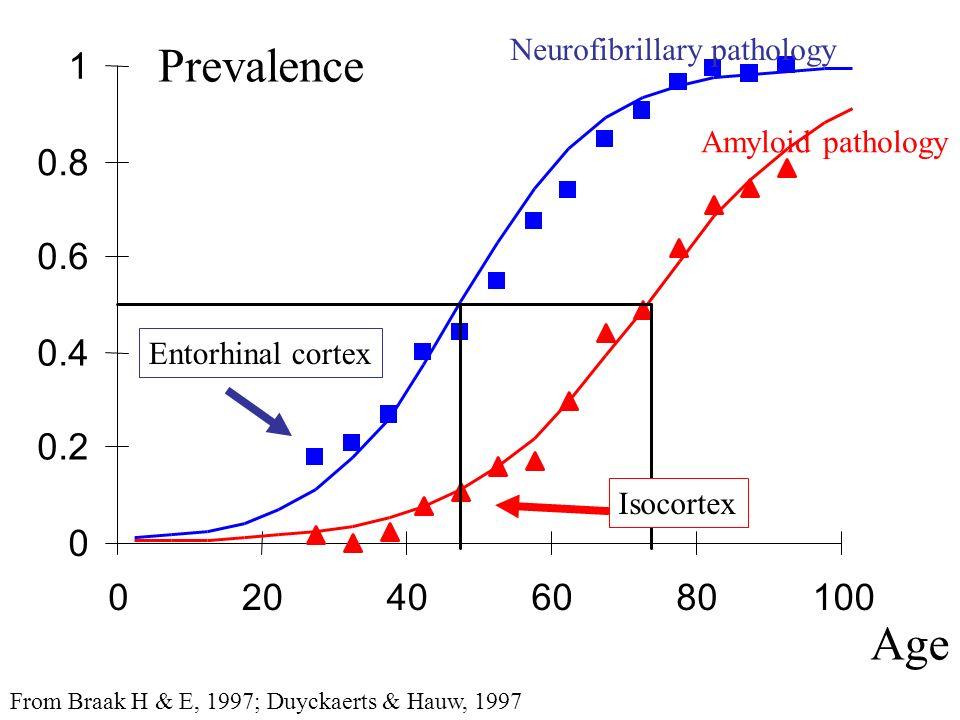 0 0.2 0.4 0.6 0.8 1 020406080100 Prevalence Neurofibrillary pathology Amyloid pathology From Braak H & E, 1997; Duyckaerts & Hauw, 1997 Age Entorhinal