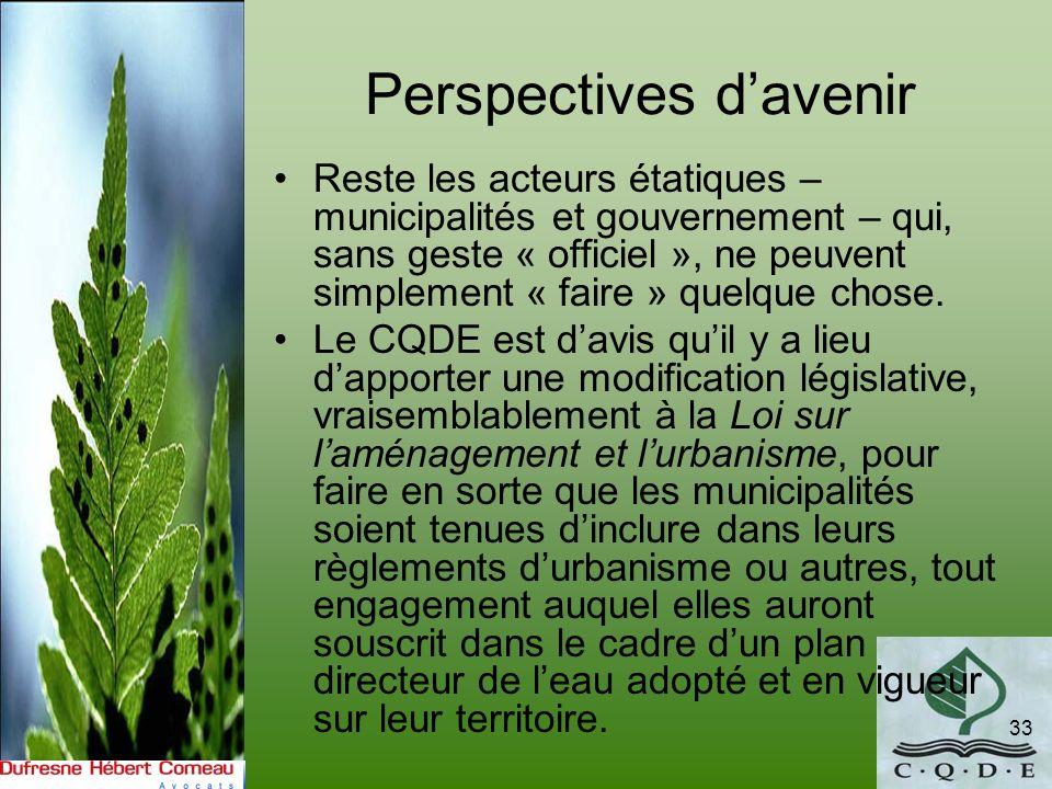 Perspectives davenir Reste les acteurs étatiques – municipalités et gouvernement – qui, sans geste « officiel », ne peuvent simplement « faire » quelq