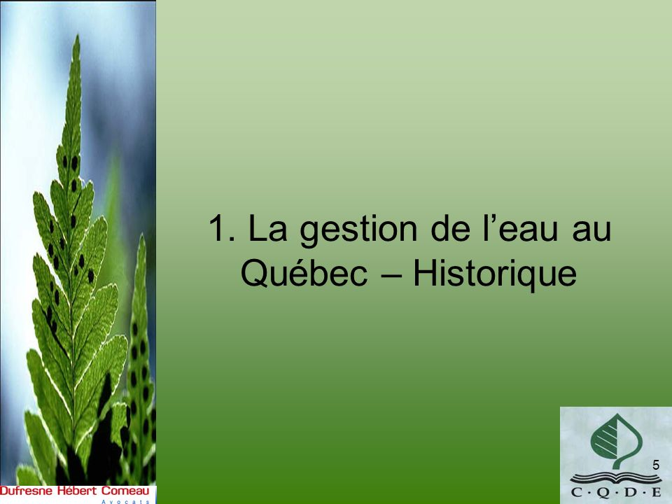 La Commission Beauchamp 16 Mandat: –«Dans le cadre de la démarche entreprise devant nous mener au développement dune politique québécoise sur la gestion de leau, le gouvernement a convenu de la nécessité de tenir une consultation publique afin de permettre à la population de sexprimer au préalable sur le sujet.» Dépôt du rapport en 2000.