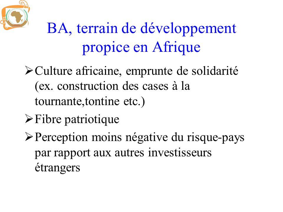 BA, terrain de développement propice en Afrique Culture africaine, emprunte de solidarité (ex. construction des cases à la tournante,tontine etc.) Fib