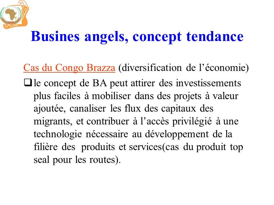 Busines angels, concept tendance Cas du Congo Brazza (diversification de léconomie) le concept de BA peut attirer des investissements plus faciles à m