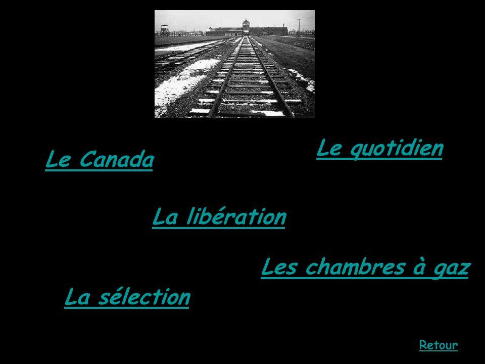 Le Canada La sélection La libération Les chambres à gaz Le quotidien Retour