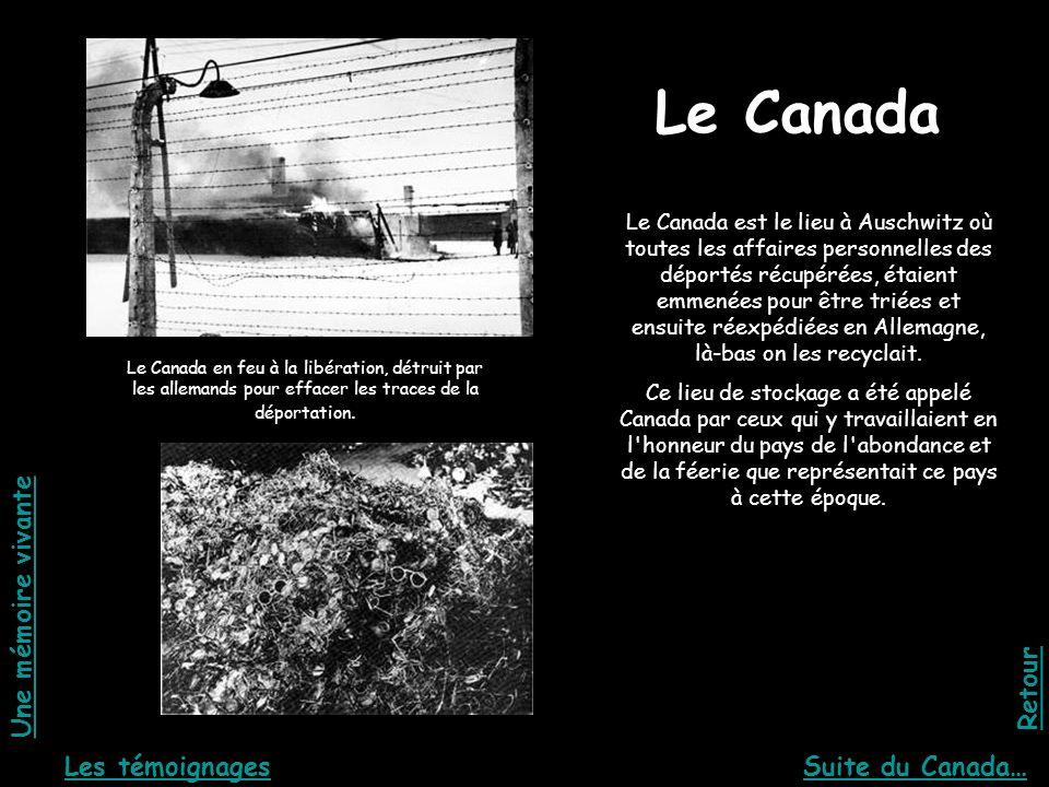 Le Canada Le Canada en feu à la libération, détruit par les allemands pour effacer les traces de la déportation. Le Canada est le lieu à Auschwitz où