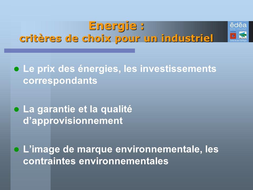 Energie : critères de choix pour un industriel Le prix des énergies, les investissements correspondants La garantie et la qualité dapprovisionnement L