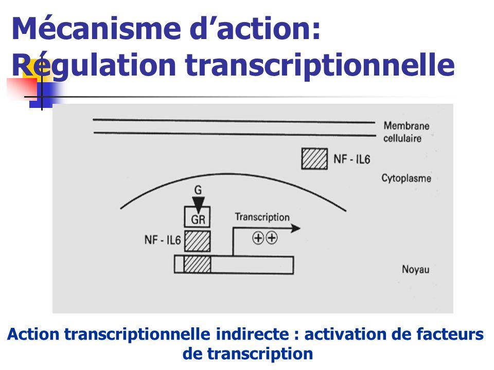 Mécanisme daction: Régulation transcriptionnelle Action transcriptionnelle indirecte : activation de facteurs de transcription