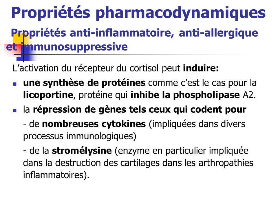 Propriétés pharmacodynamiques Propriétés anti-inflammatoire, anti-allergique et immunosuppressive Lactivation du récepteur du cortisol peut induire: une synthèse de protéines comme cest le cas pour la licoportine, protéine qui inhibe la phospholipase A2.