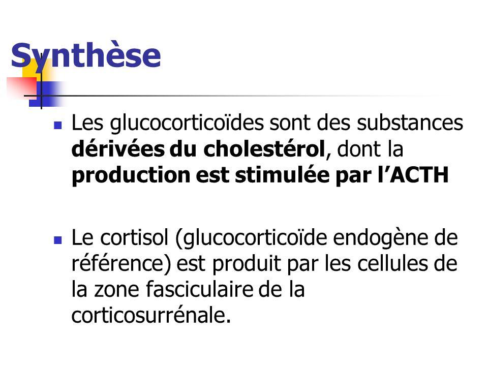 Synthèse Les glucocorticoïdes sont des substances dérivées du cholestérol, dont la production est stimulée par lACTH Le cortisol (glucocorticoïde endo