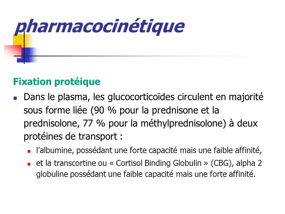 pharmacocinétique Fixation protéique Dans le plasma, les glucocorticoïdes circulent en majorité sous forme liée (90 % pour la prednisone et la prednisolone, 77 % pour la méthylprednisolone) à deux protéines de transport : lalbumine, possédant une forte capacité mais une faible affinité, et la transcortine ou « Cortisol Binding Globulin » (CBG), alpha 2 globuline possédant une faible capacité mais une forte affinité.