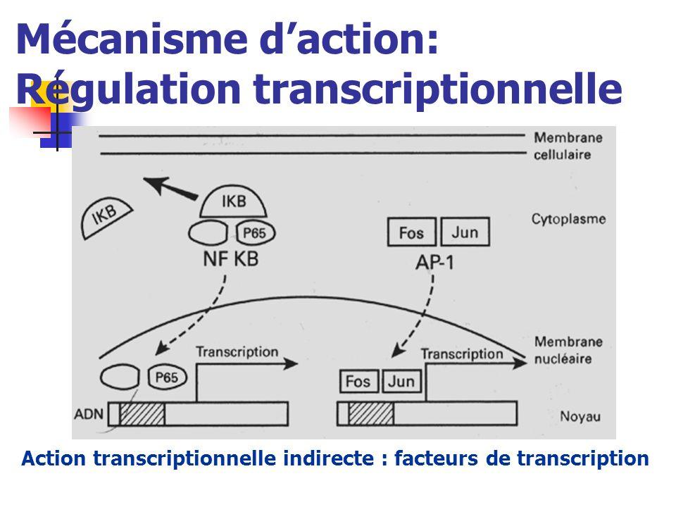 Mécanisme daction: Régulation transcriptionnelle Action transcriptionnelle indirecte : facteurs de transcription