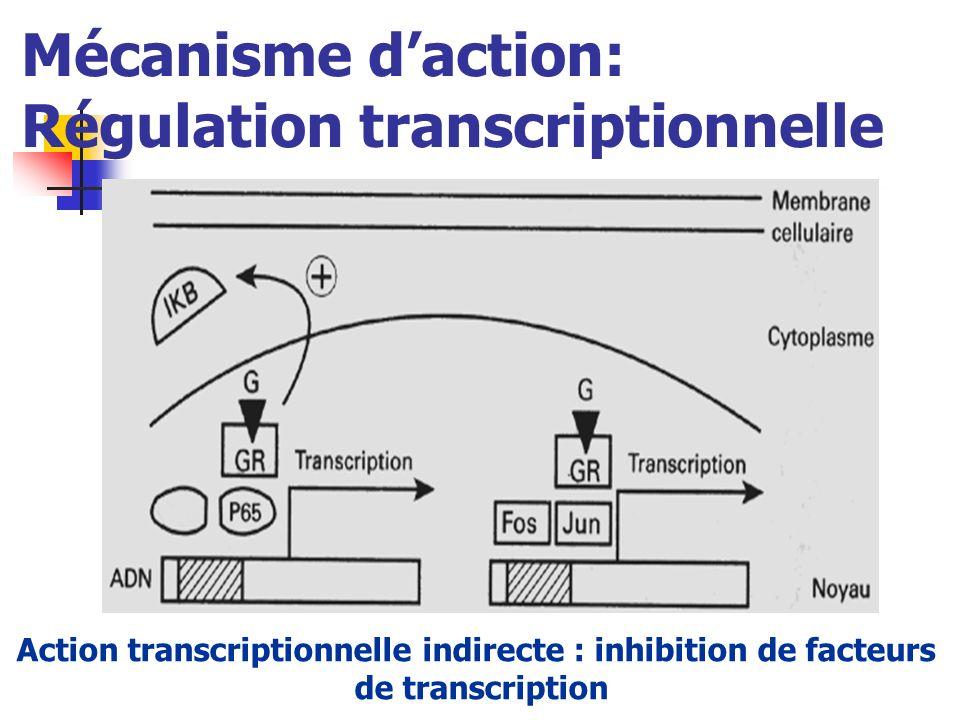 Mécanisme daction: Régulation transcriptionnelle Action transcriptionnelle indirecte : inhibition de facteurs de transcription