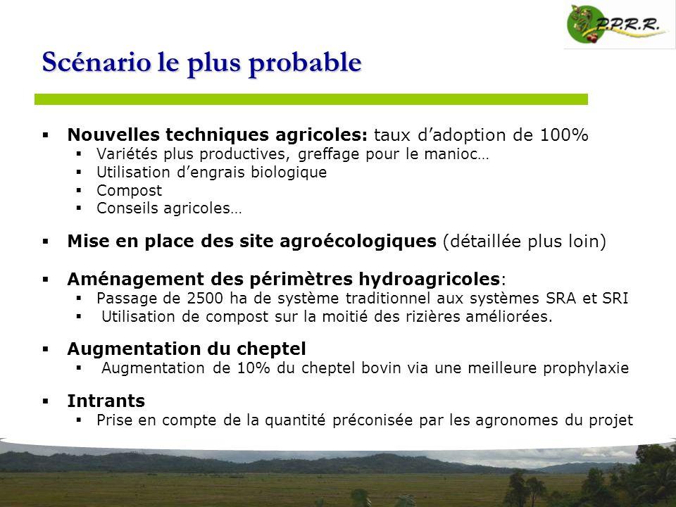 Scénario le plus probable Nouvelles techniques agricoles: taux dadoption de 100% Variétés plus productives, greffage pour le manioc… Utilisation dengr