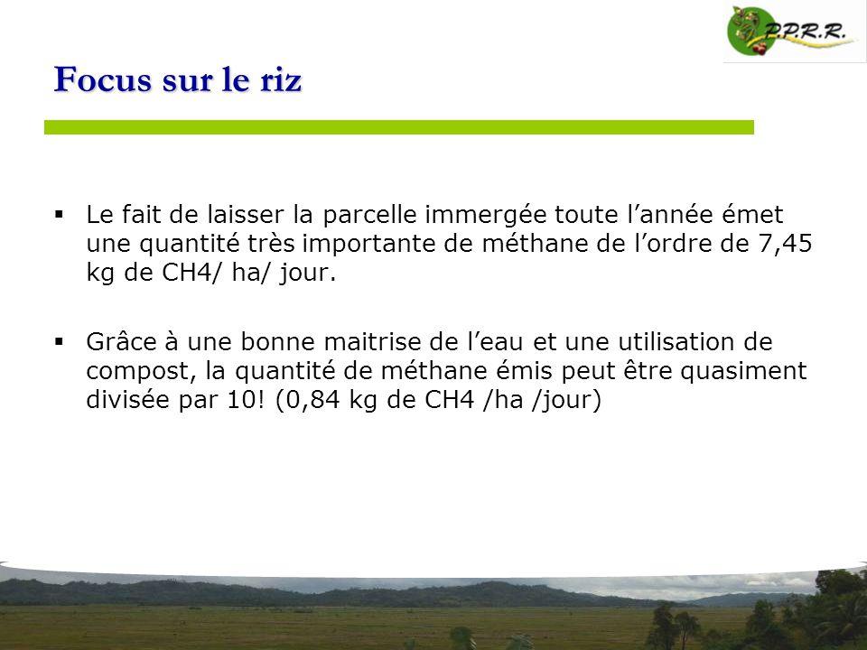 Focus sur le riz Le fait de laisser la parcelle immergée toute lannée émet une quantité très importante de méthane de lordre de 7,45 kg de CH4/ ha/ jo
