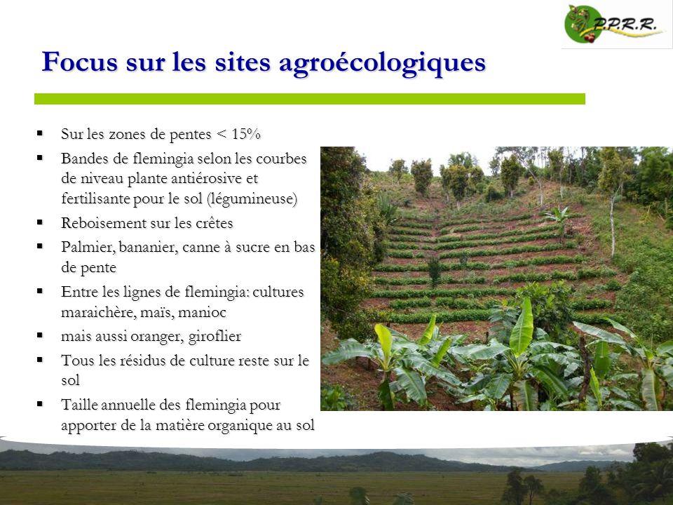 Focus sur les sites agroécologiques Sur les zones de pentes < 15% Sur les zones de pentes < 15% Bandes de flemingia selon les courbes de niveau plante