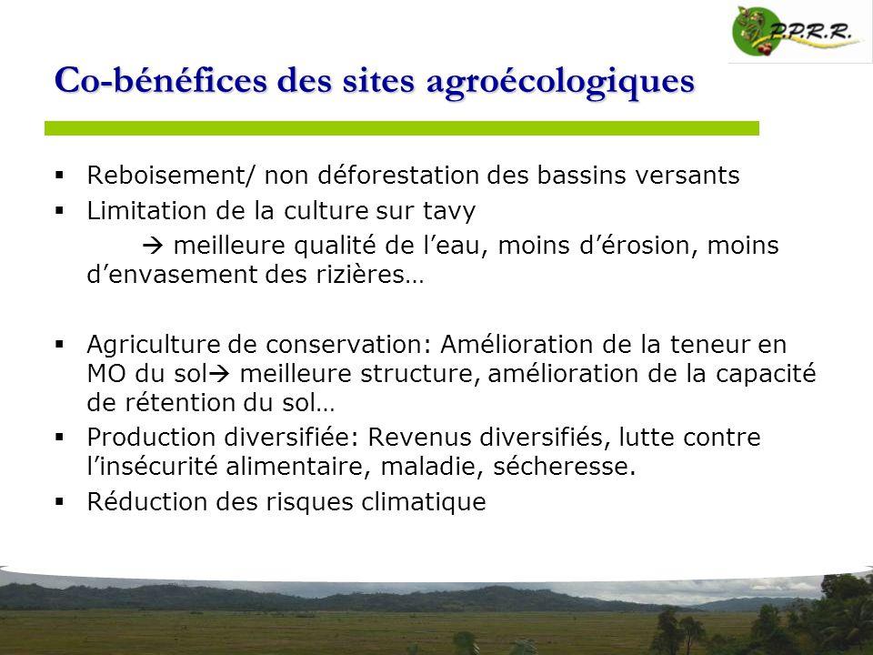 Co-bénéfices des sites agroécologiques Reboisement/ non déforestation des bassins versants Limitation de la culture sur tavy meilleure qualité de leau