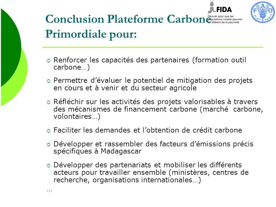 Conclusion Plateforme Carbone Primordiale pour: Renforcer les capacités des partenaires (formation outil carbone…) Permettre dévaluer le potentiel de