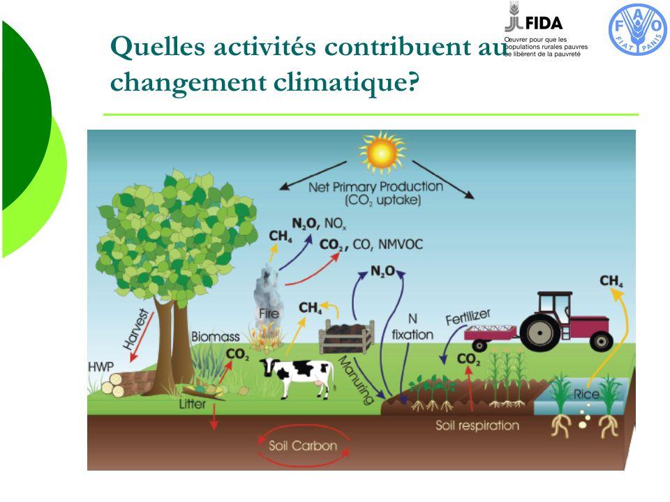 Loutil EX-ACT EX-ACT (Ex Ante Carbon-balance Tool) est un outil conjointement développé par trois divisions FAO.