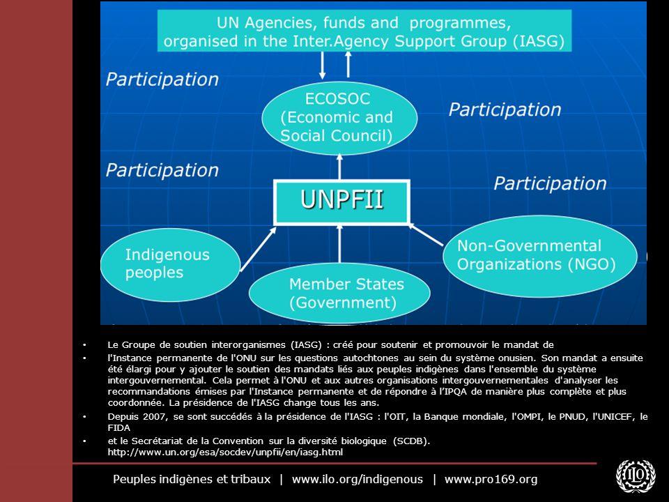 Peuples indigènes et tribaux | www.ilo.org/indigenous | www.pro169.org Le Groupe de soutien interorganismes (IASG) : créé pour soutenir et promouvoir