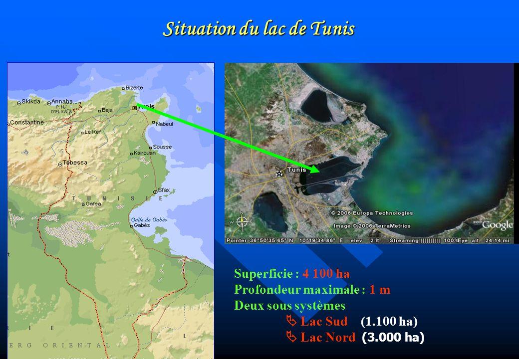 Superficie : 4 100 ha Profondeur maximale : 1 m Deux sous systèmes Lac Sud (1.100 ha) Lac Nord (3.000 ha) Situation du lac de Tunis