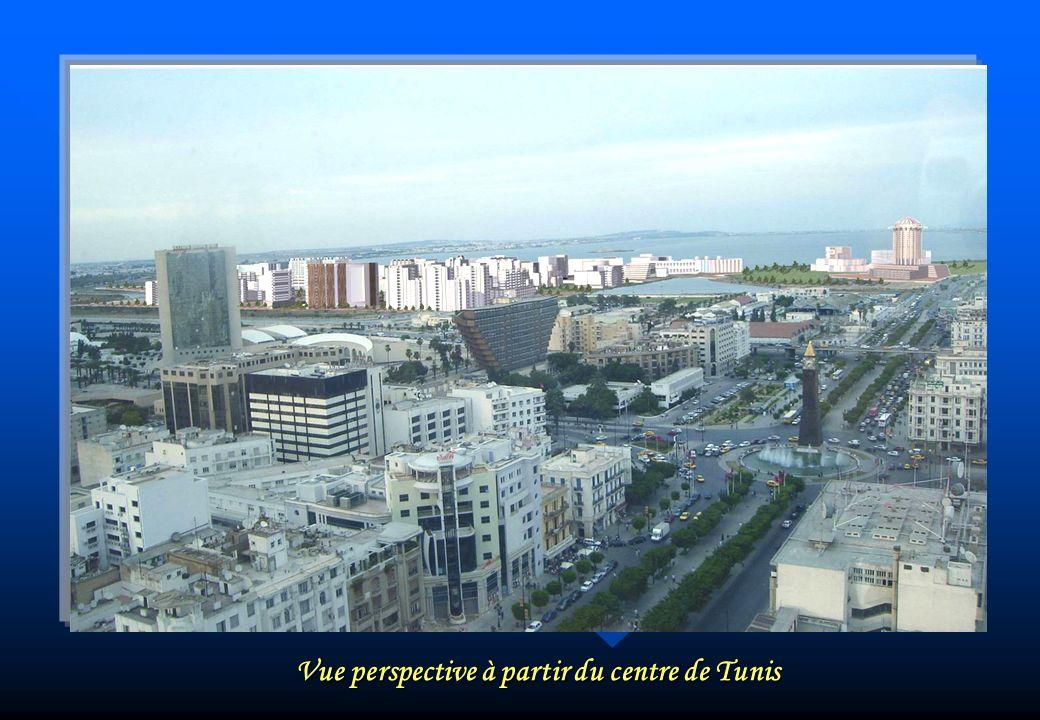 Vue perspective à partir du centre de Tunis