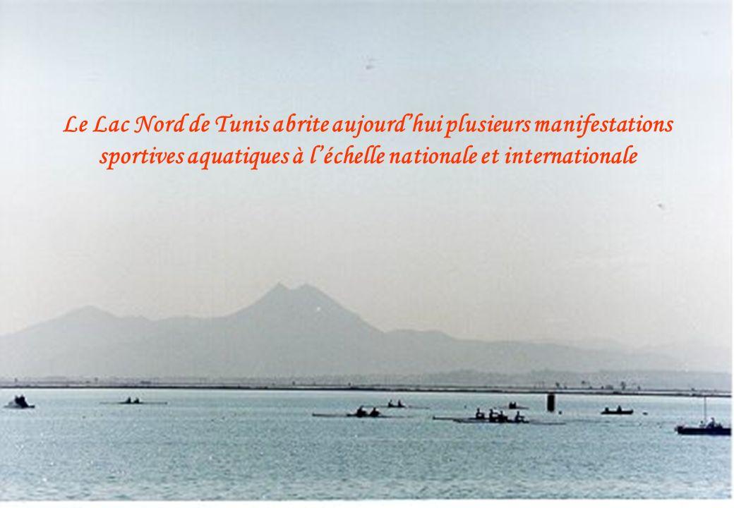 Le Lac Nord de Tunis abrite aujourdhui plusieurs manifestations sportives aquatiques à léchelle nationale et internationale