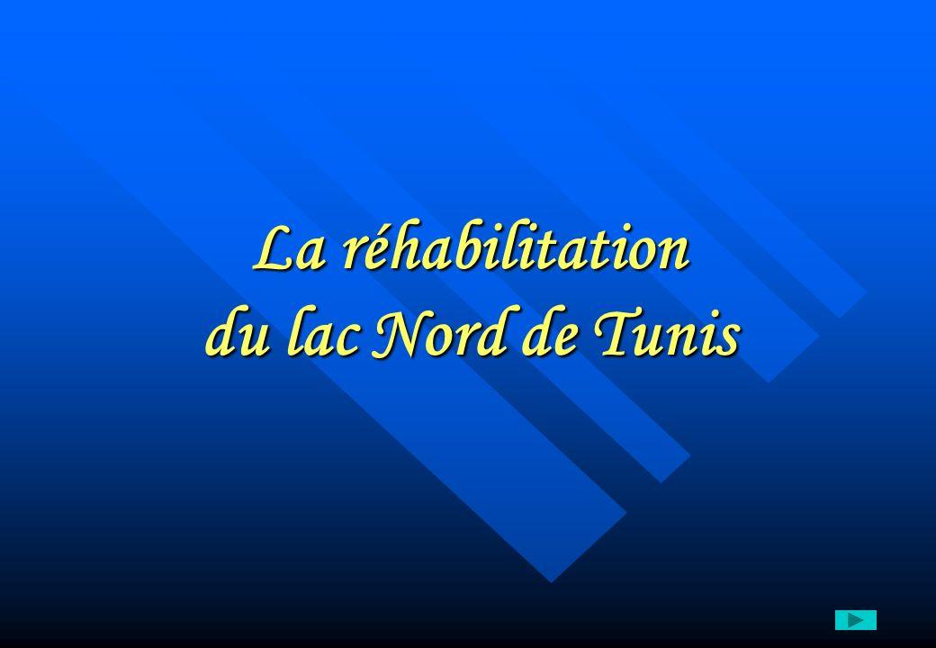 La réhabilitation du lac Nord de Tunis