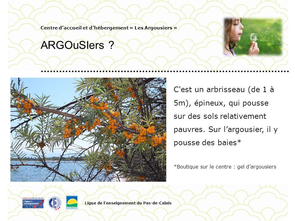 Centre daccueil et dhébergement « Les Argousiers » ARGOuSIers ? Ligue de lenseignement du Pas-de-Calais Pour personnaliser la date et le titre du Pied