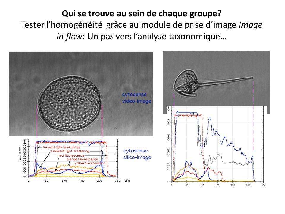 Qui se trouve au sein de chaque groupe? Tester lhomogénéité grâce au module de prise dimage Image in flow: Un pas vers lanalyse taxonomique…
