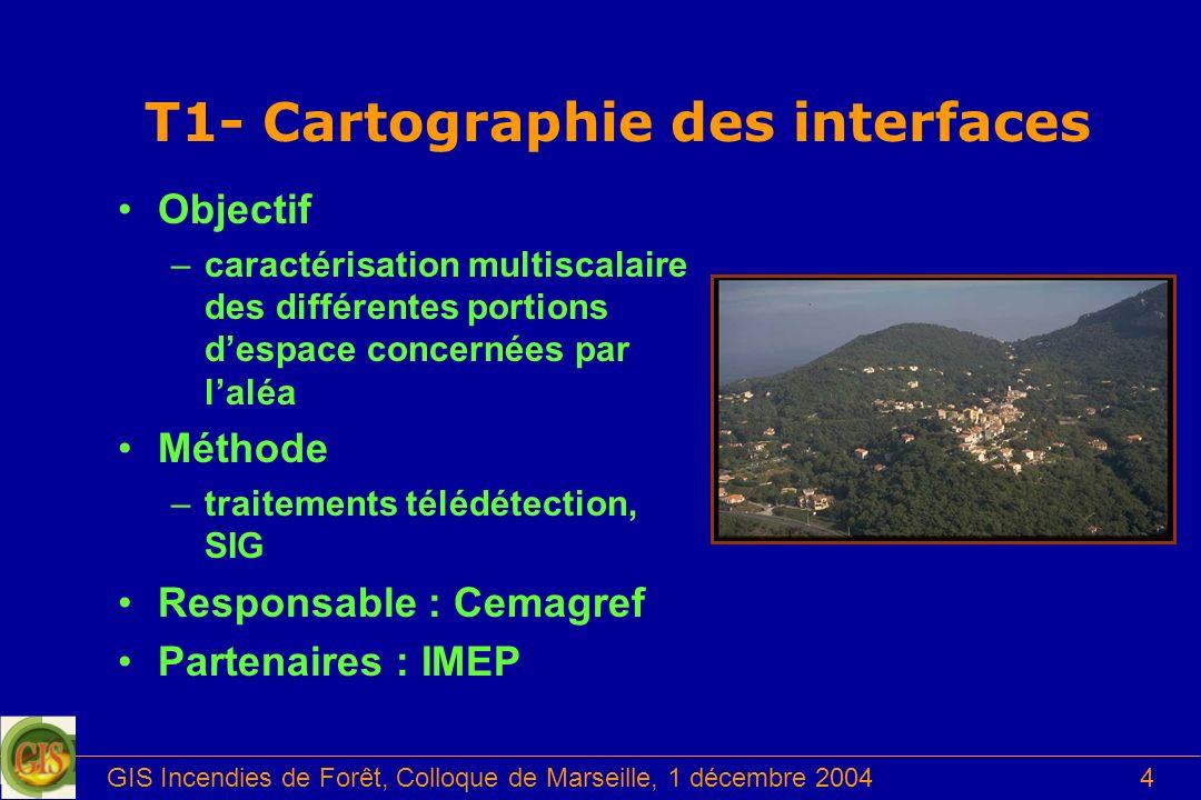 GIS Incendies de Forêt, Colloque de Marseille, 1 décembre 20044 Objectif –caractérisation multiscalaire des différentes portions despace concernées pa