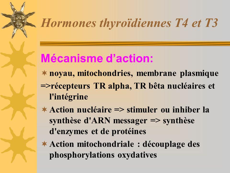 Hormones thyroïdiennes T4 et T3 Mécanisme daction: noyau, mitochondries, membrane plasmique =>récepteurs TR alpha, TR bêta nucléaires et l'intégrine A