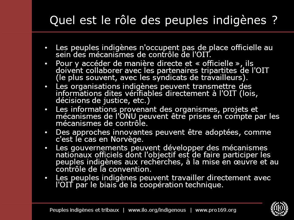 Peuples indigènes et tribaux | www.ilo.org/indigenous | www.pro169.org Quel est le rôle des peuples indigènes ? Les peuples indigènes n'occupent pas d