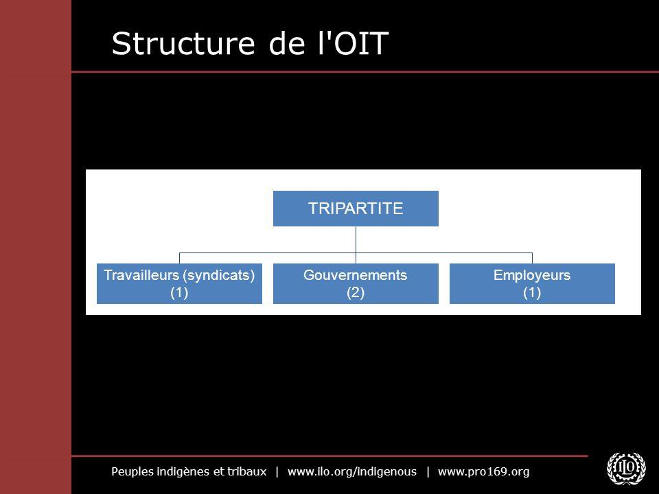 Peuples indigènes et tribaux | www.ilo.org/indigenous | www.pro169.org Structure de l'OIT TRIPARTITE Travailleurs (syndicats) (1) Gouvernements (2) Em