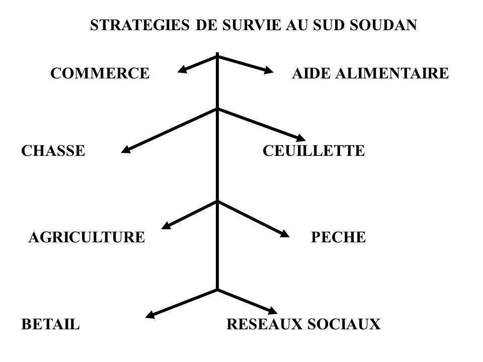 STRATEGIES DE SURVIE AU SUD SOUDAN COMMERCEAIDE ALIMENTAIRE CHASSECEUILLETTE AGRICULTUREPECHE BETAIL RESEAUX SOCIAUX