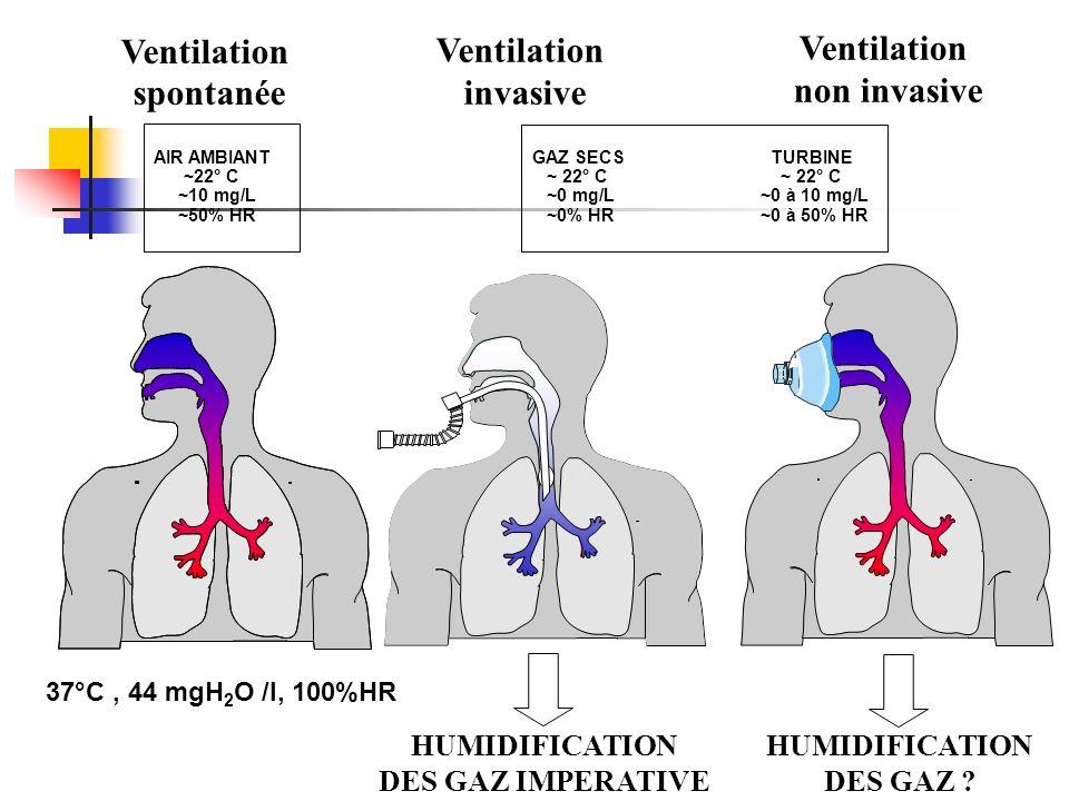 AIR AMBIANT ~22° C ~10 mg/L ~50% HR 37°C, 44 mgH 2 O /l, 100%HR Ventilation spontanée GAZ SECS TURBINE ~ 22° C ~ 22° C ~0 mg/L ~0 à 10 mg/L ~0% HR ~0