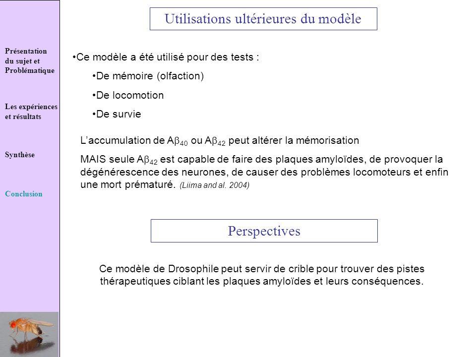 Présentation du sujet et Problématique Les expériences et résultats Synthèse Conclusion Utilisations ultérieures du modèle Perspectives Ce modèle a ét