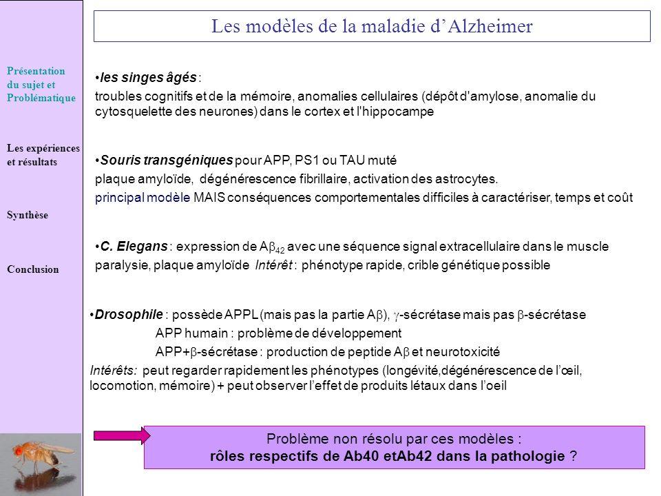 Présentation du sujet et Problématique Les expériences et résultats Synthèse Conclusion Les modèles de la maladie dAlzheimer Problème non résolu par c
