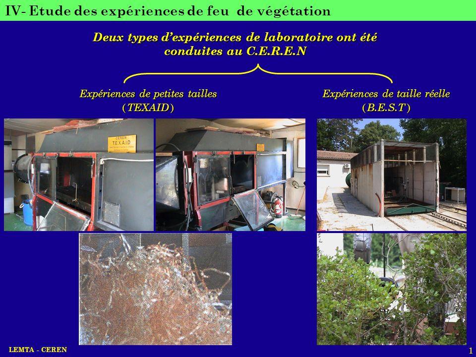 LEMTA - CEREN 1 IV- Etude des expériences de feu de végétation Deux types dexpériences de laboratoire ont été conduites au C.E.R.E.N Expériences de pe