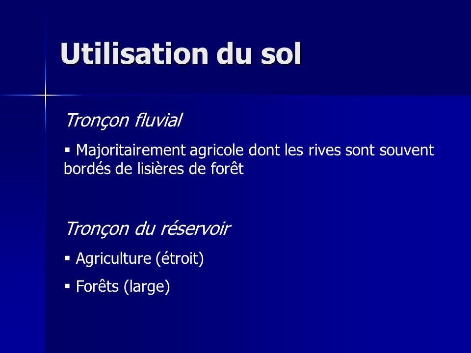 Utilisation du sol Tronçon fluvial Majoritairement agricole dont les rives sont souvent bordés de lisières de forêt Tronçon du réservoir Agriculture (étroit) Forêts (large)