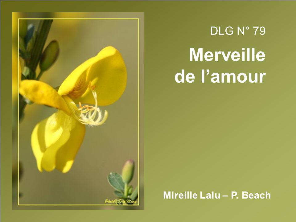 DLG N° 79 Merveille de lamour Mireille Lalu – P. Beach