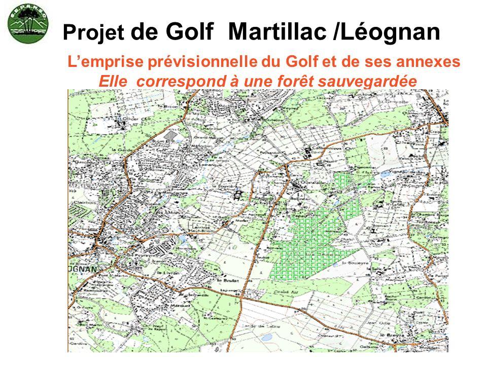 Projet de Golf Martillac /Léognan Lemprise prévisionnelle du Golf et de ses annexes Elle correspond à une forêt sauvegardée