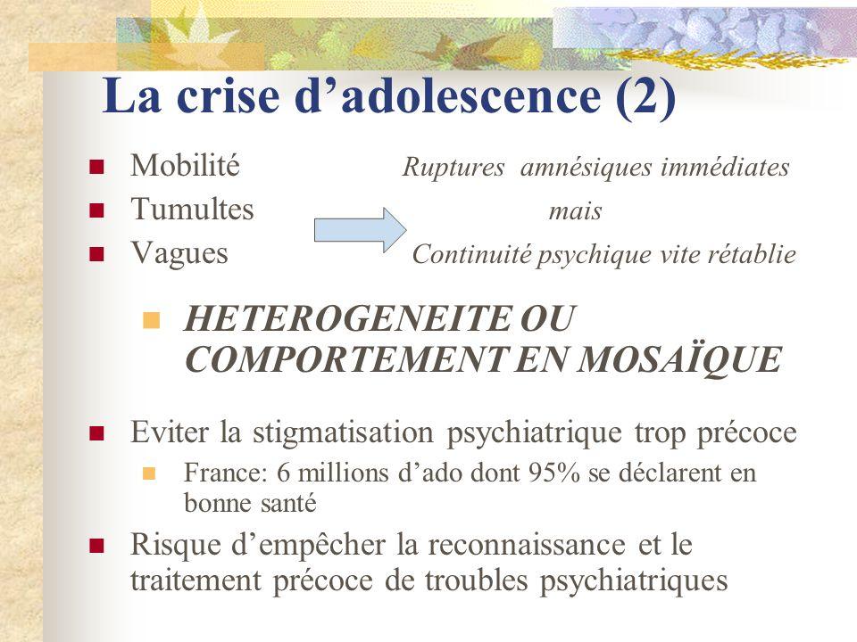La crise dadolescence (2) Mobilité Ruptures amnésiques immédiates Tumultes mais Vagues Continuité psychique vite rétablie HETEROGENEITE OU COMPORTEMEN